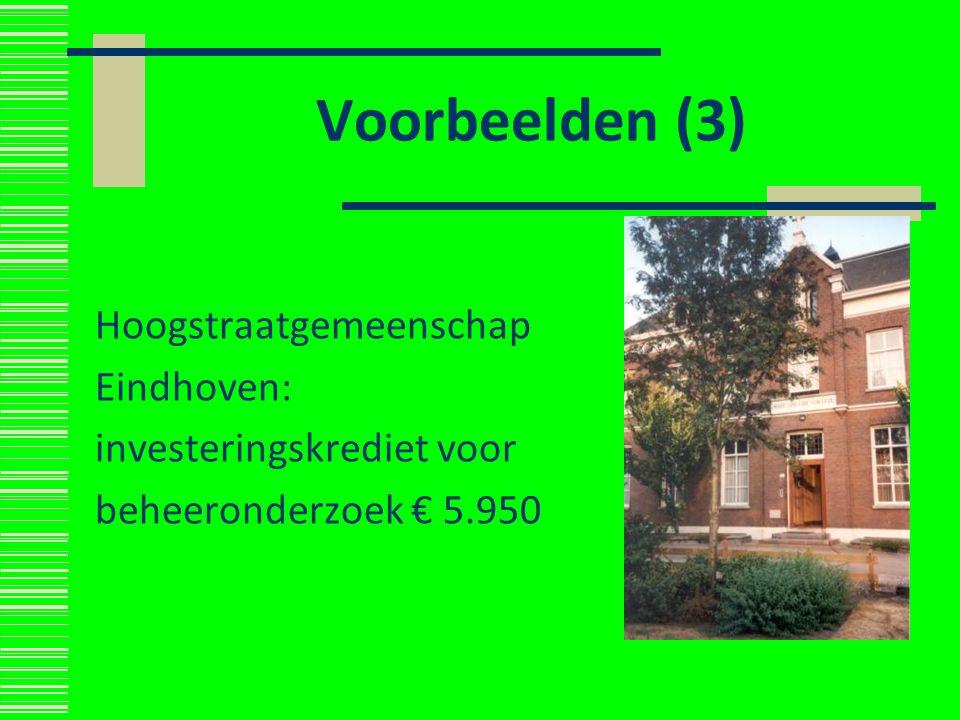 Voorbeelden (3) Hoogstraatgemeenschap Eindhoven: investeringskrediet voor beheeronderzoek € 5.950