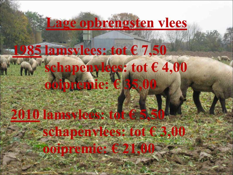 Lage opbrengsten vlees 1985 lamsvlees: tot € 7,50 schapenvlees: tot € 4,00 ooipremie: € 35,00 2010 lamsvlees: tot € 5,50 schapenvlees: tot € 3,00 ooipremie: € 21,00