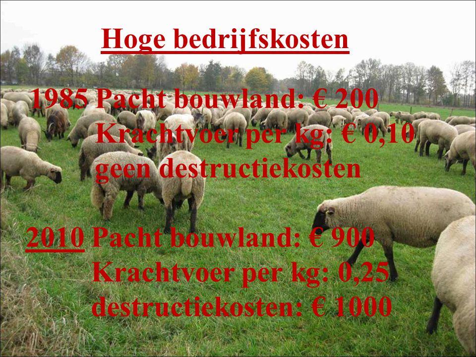 Hoge bedrijfskosten 1985 Pacht bouwland: € 200 Krachtvoer per kg: € 0,10 geen destructiekosten 2010 Pacht bouwland: € 900 Krachtvoer per kg: 0,25 destructiekosten: € 1000