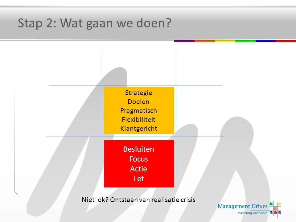 Niet ok? Ontstaan van realisatie crisis Strategie Doelen Pragmatisch Flexibiliteit Klantgericht Besluiten Focus Actie Lef Stap 2: Wat gaan we doen?