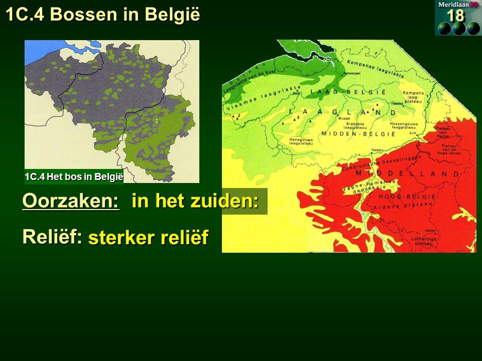 Oorzaken: in het zuiden: Reliëf: sterker reliëf sterker reliëf 1C.4 Het bos in België 18 1C.4 Bossen in België