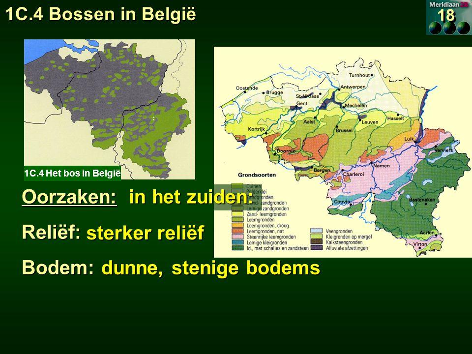 1C.4 Het bos in België Oorzaken: in het zuiden: Reliëf:Bodem: sterker reliëf sterker reliëf dunne, stenige bodems dunne, stenige bodems 18 1C.4 Bossen in België