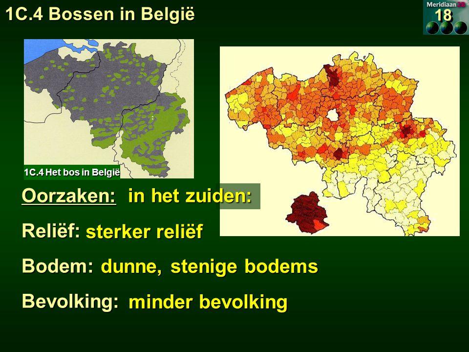 Oorzaken: in het zuiden: Reliëf:Bodem:Bevolking: sterker reliëf sterker reliëf dunne, stenige bodems dunne, stenige bodems minder bevolking 1C.4 Het bos in België 18 1C.4 Bossen in België