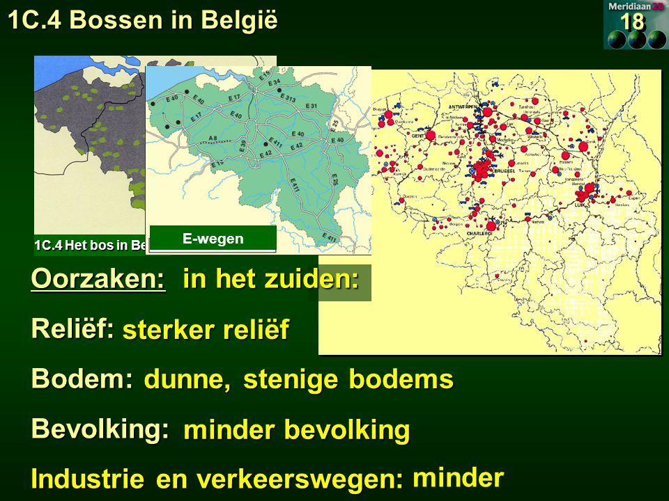 1C.4 Het bos in België E-wegen minder Oorzaken: in het zuiden: Reliëf:Bodem:Bevolking: Industrie en verkeerswegen: sterker reliëf sterker reliëf dunne, stenige bodems dunne, stenige bodems minder bevolking 18 1C.4 Bossen in België