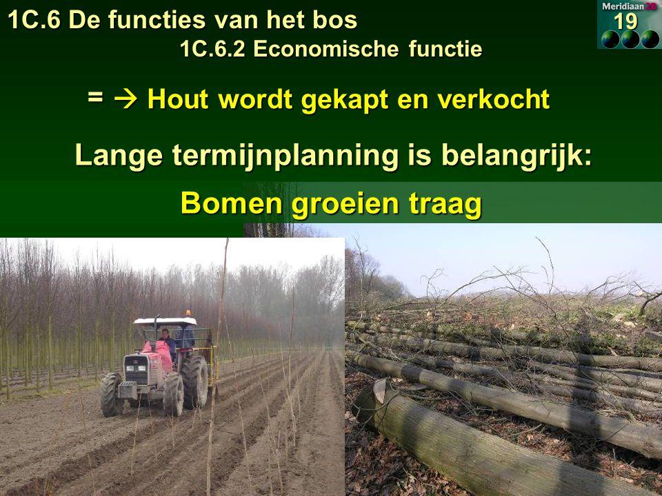 Lange termijnplanning is belangrijk:  Hout wordt gekapt en verkocht Bomen groeien traag = 1C.6 De functies van het bos 1C.6.2 Economische functie 19