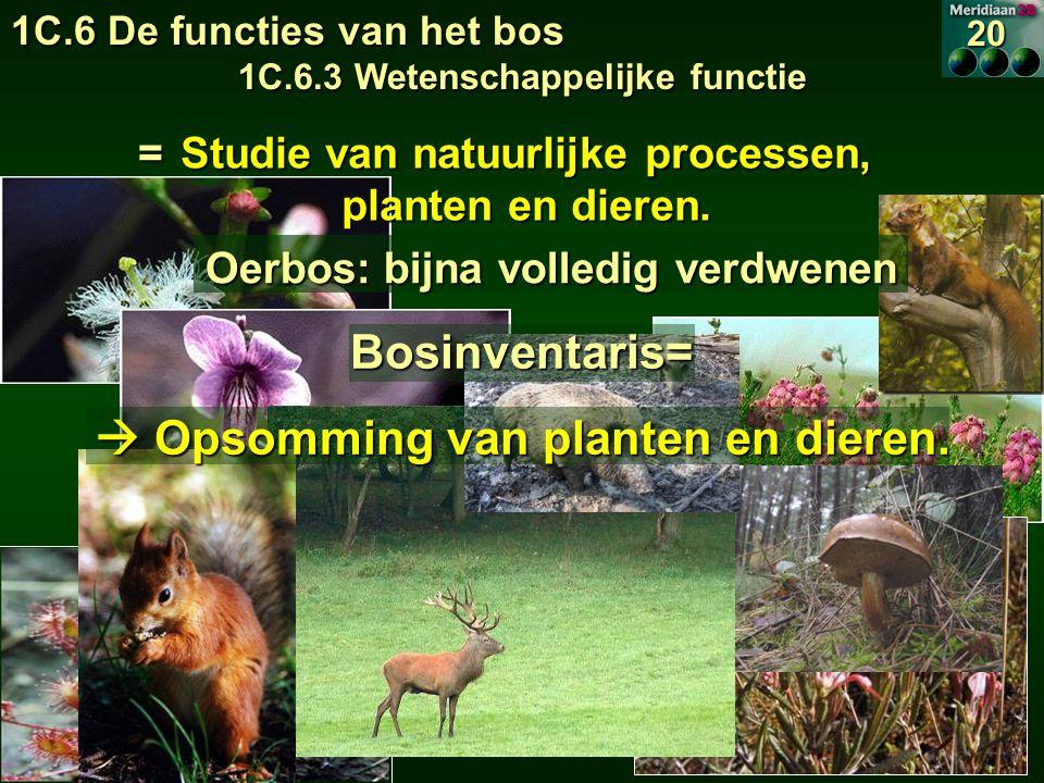 1C.6 De functies van het bos 1C.6.3 Wetenschappelijke functie 20 Studie van natuurlijke processen, planten en dieren.