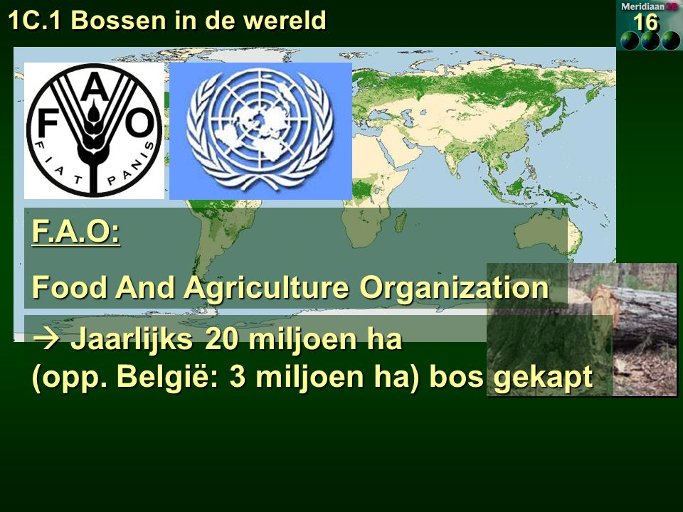 F.A.O: Food And Agriculture Organization  Jaarlijks 20 miljoen ha (opp.