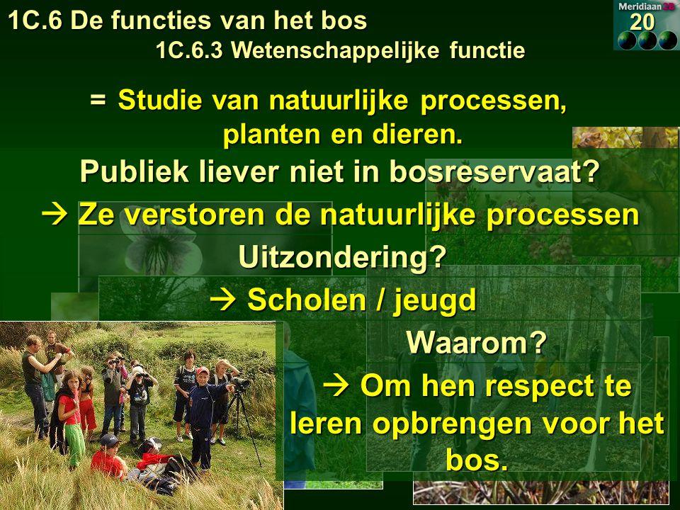 Publiek liever niet in bosreservaat. Ze verstoren de natuurlijke processen Uitzondering.