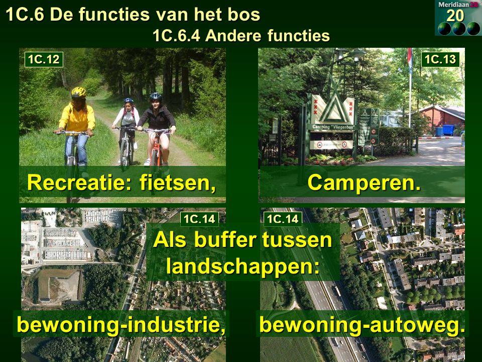 1C.6 De functies van het bos 1C.6.4 Andere functies 20 Recreatie: fietsen, 1C.121C.13 Camperen.