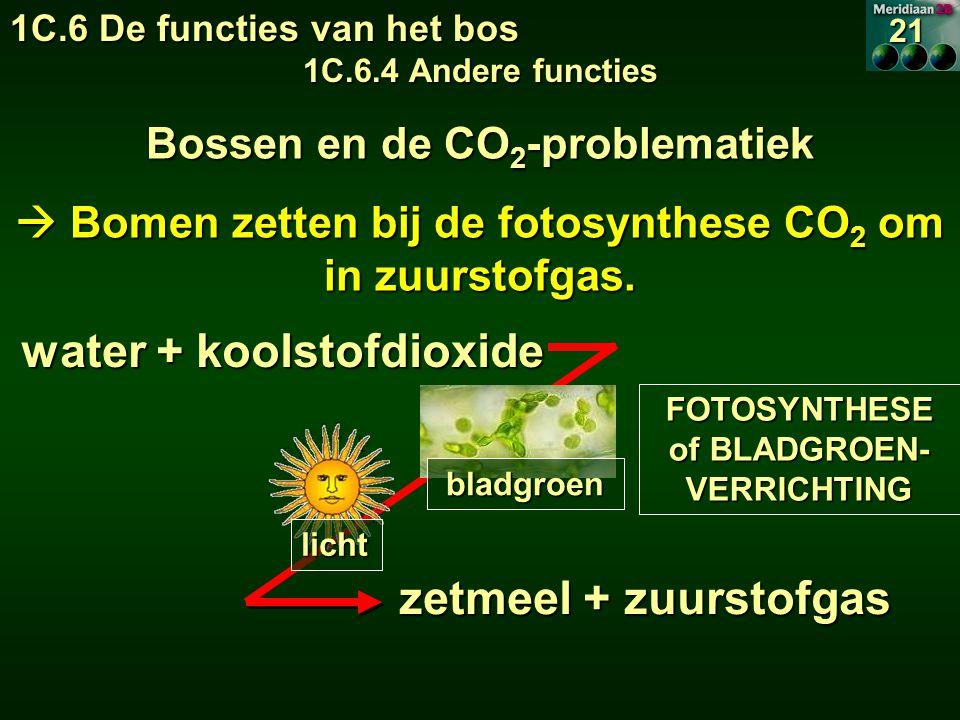 FOTOSYNTHESE of BLADGROEN- VERRICHTING water + koolstofdioxide zetmeel + zuurstofgas bladgroen licht Bossen en de CO 2 -problematiek  Bomen zetten bij de fotosynthese CO 2 om in zuurstofgas.