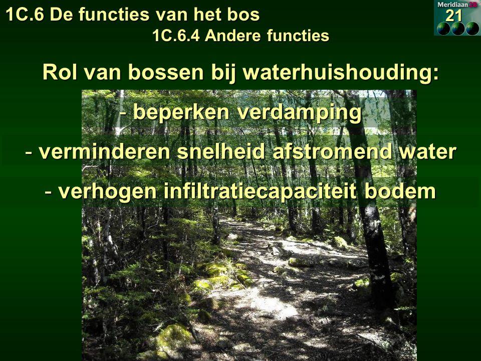 1C.6 De functies van het bos 1C.6.4 Andere functies 21 Rol van bossen bij waterhuishouding: - beperken verdamping - verminderen snelheid afstromend water - verhogen infiltratiecapaciteit bodem