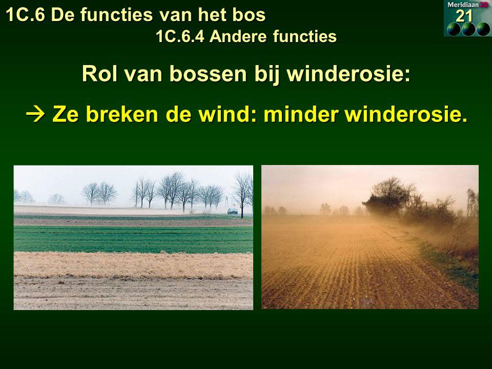 Rol van bossen bij winderosie:  Ze breken de wind: minder winderosie.