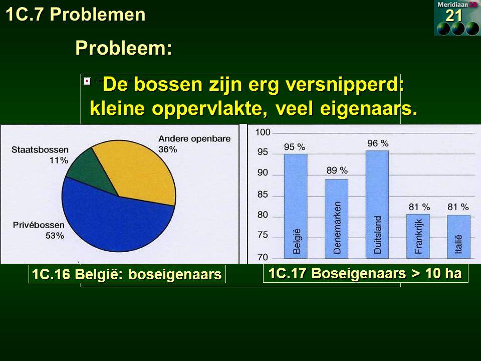 1C.16 België: boseigenaars 1C.17 Boseigenaars > 10 ha 1C.7 Problemen 21 Probleem: De bossen zijn erg versnipperd: kleine oppervlakte, veel eigenaars.