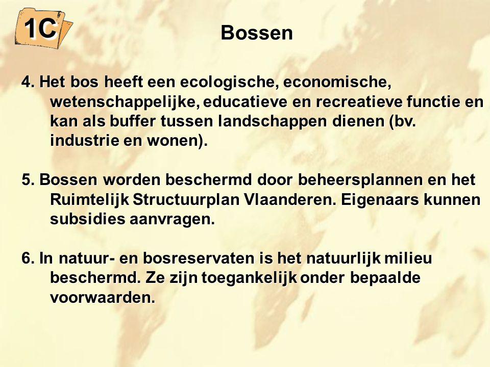 Bossen 4.