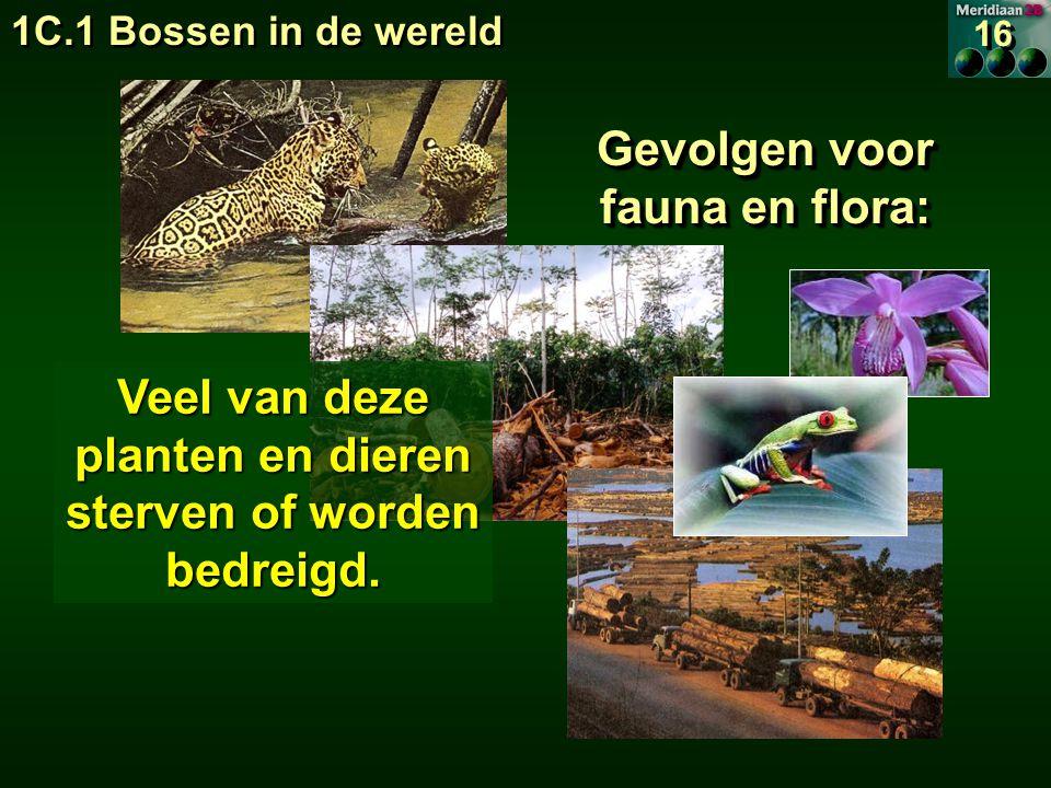 Gevolgen voor fauna en flora: Veel van deze planten en dieren sterven of worden bedreigd.