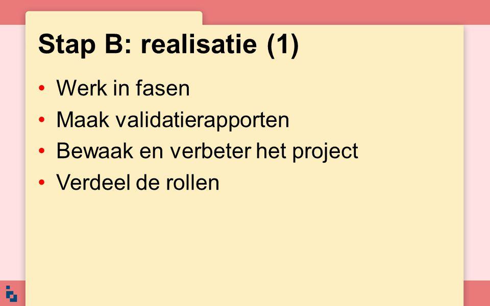 Stap B: realisatie (2) Beslis of het project doorgaat Kies de juiste methode Kies het juiste gereedschap Maak afspraken over de uitvoering