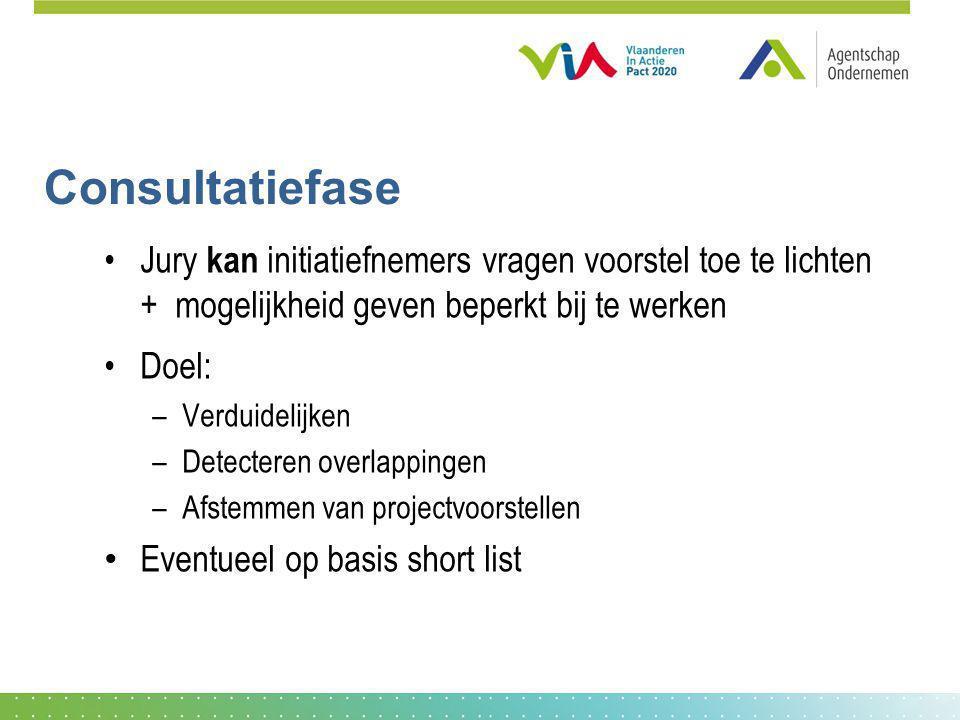 Consultatiefase Jury kan initiatiefnemers vragen voorstel toe te lichten + mogelijkheid geven beperkt bij te werken Doel: –Verduidelijken –Detecteren