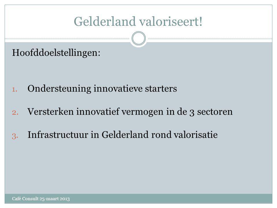 Gelderland valoriseert. Hoofddoelstellingen: 1. Ondersteuning innovatieve starters 2.
