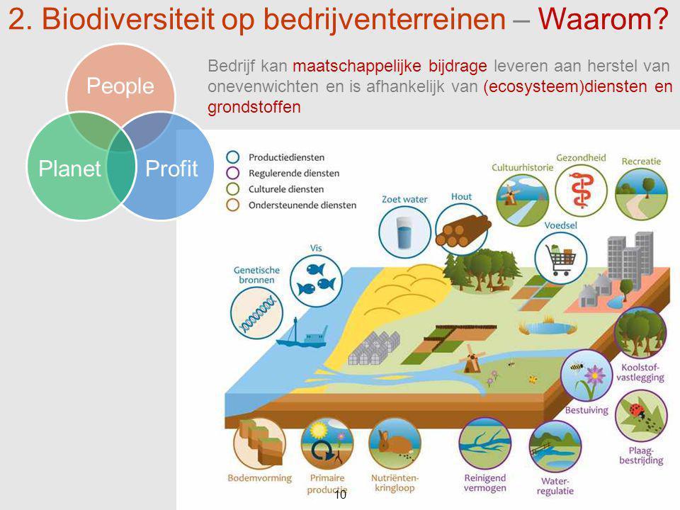 10 People ProfitPlanet 10 2. Biodiversiteit op bedrijventerreinen – Waarom? Bedrijf kan maatschappelijke bijdrage leveren aan herstel van onevenwichte