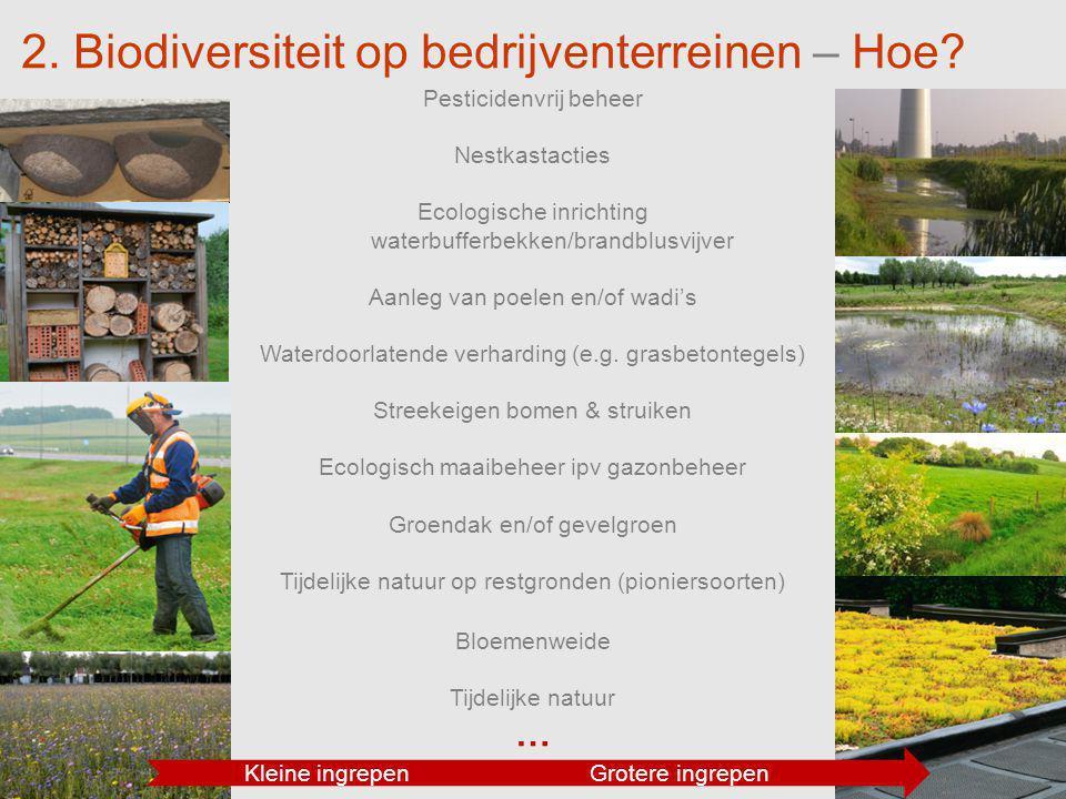 16 2. Biodiversiteit op bedrijventerreinen – Hoe? Pesticidenvrij beheer Nestkastacties Ecologische inrichting waterbufferbekken/brandblusvijver Aanleg