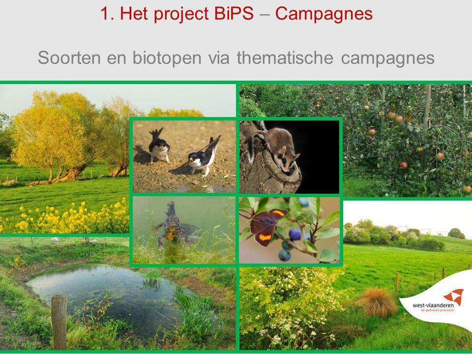 66 1. Het project BiPS – Campagnes Soorten en biotopen via thematische campagnes