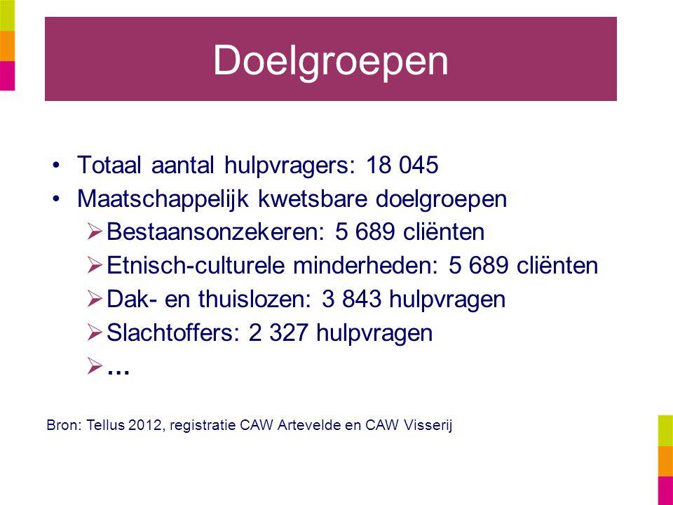 Doelgroepen Totaal aantal hulpvragers: 18 045 Maatschappelijk kwetsbare doelgroepen  Bestaansonzekeren: 5 689 cliënten  Etnisch-culturele minderhede