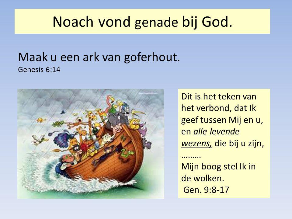 Noach vond genade bij God.Maak u een ark van goferhout.