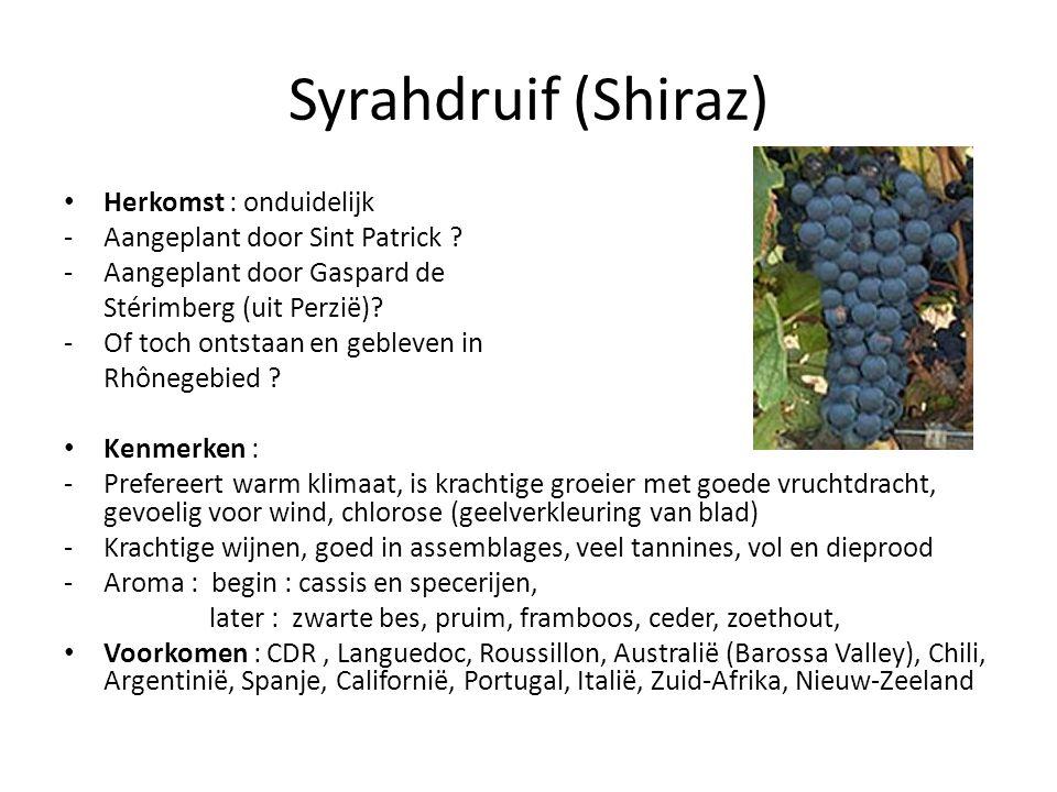 Syrahdruif (Shiraz) Herkomst : onduidelijk -Aangeplant door Sint Patrick .