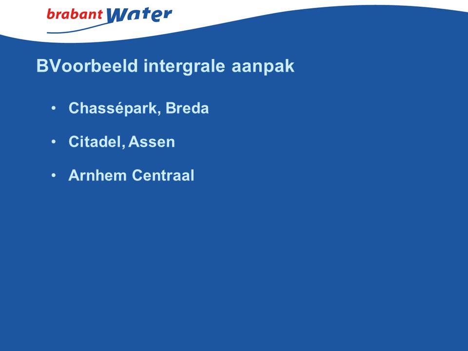 BVoorbeeld intergrale aanpak Chassépark, Breda Citadel, Assen Arnhem Centraal