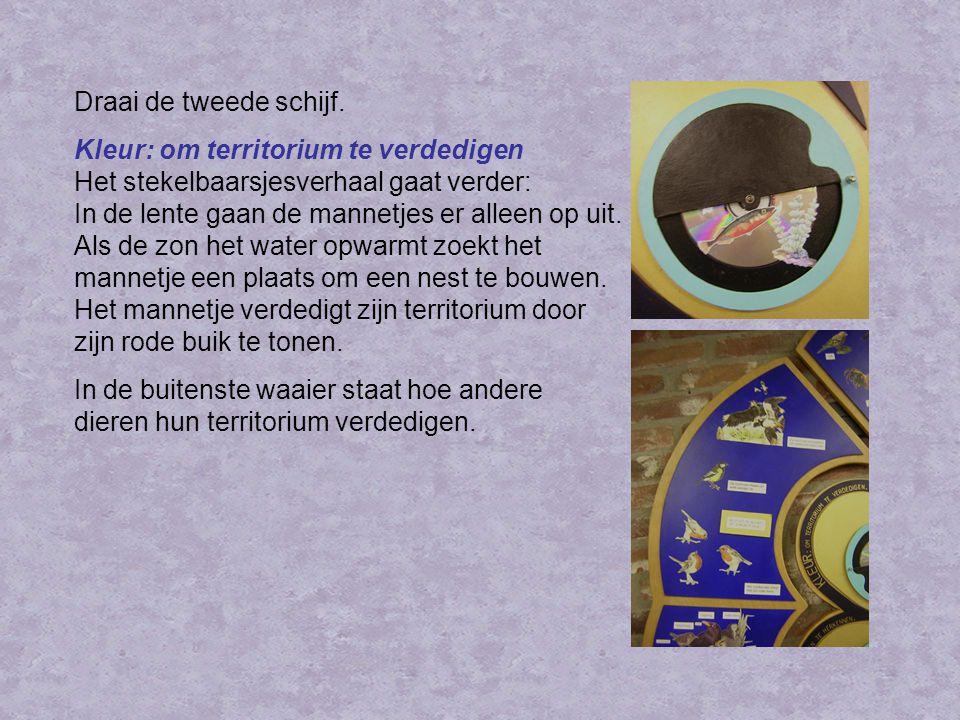 Werkvel groep 3 Voor groep 3 is er een werkvel met acht plaatjes.