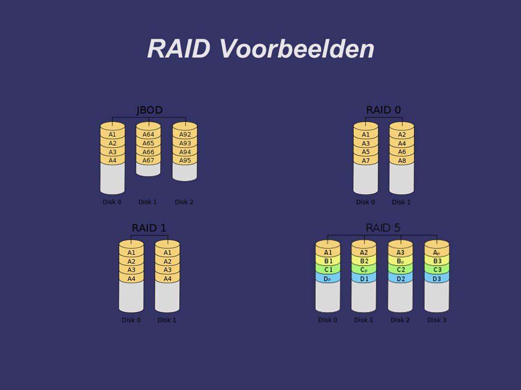 RAID Voorbeelden