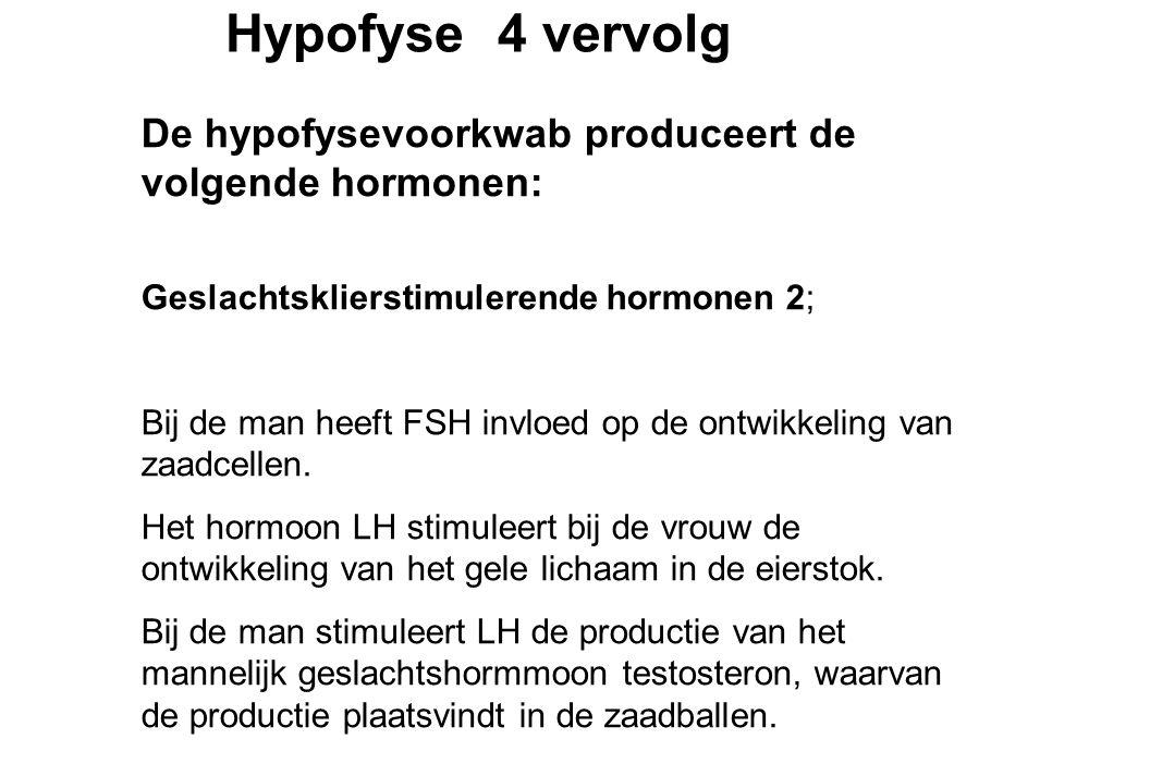 Hypofyse 4 vervolg De hypofysevoorkwab produceert de volgende hormonen: Geslachtsklierstimulerende hormonen 2; Bij de man heeft FSH invloed op de ontwikkeling van zaadcellen.