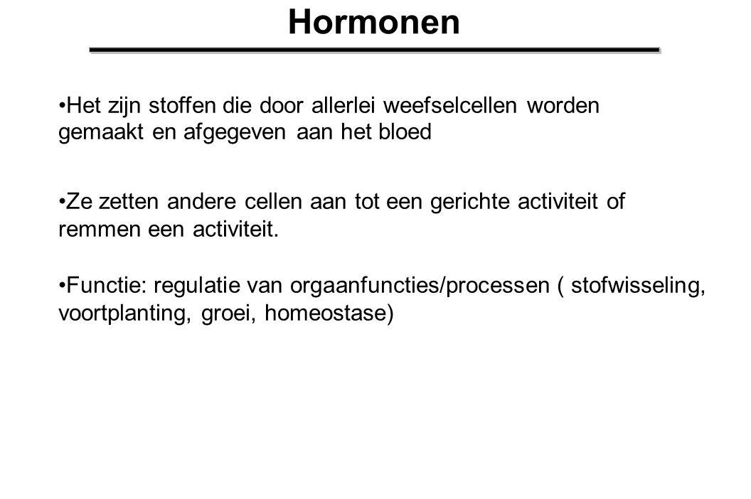 Hormonen Hormonen: eiwitten met een specifieke moleculaire structuur De aanmaakplaats is meestal een andere dan de werkingsplaats Tijdelijk aanwezig in het bloed, afbraak in de lever Hormoonafgifte wordt in veel gevallen gereguleerd via een regelkring, waarin negatieve terugkoppeling een grote rol speelt.