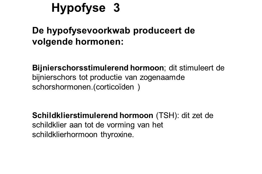 Hypofyse 4 De hypofysevoorkwab produceert de volgende hormonen: Geslachtsklierstimulerende hormonen; deze stimuleren de geslachtsklieren of gonaden: bij de vrouw de eierstokken en bij de man de zaadballen.