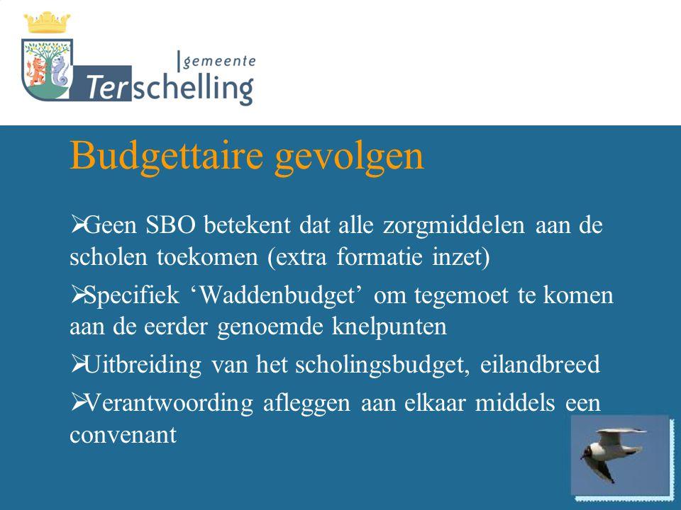 Budgettaire gevolgen  Geen SBO betekent dat alle zorgmiddelen aan de scholen toekomen (extra formatie inzet)  Specifiek 'Waddenbudget' om tegemoet t