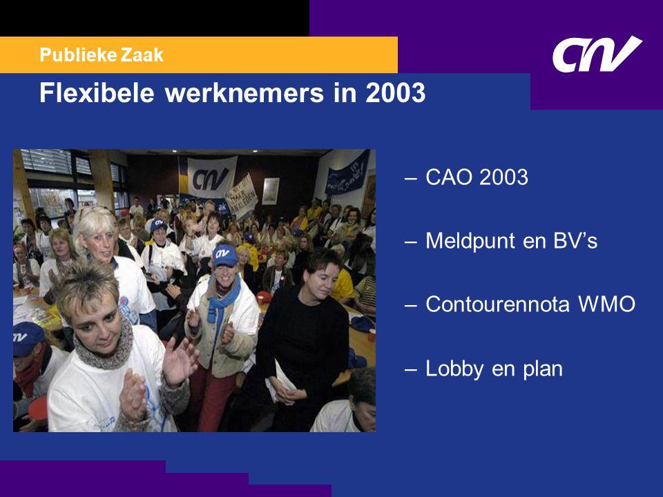Publieke Zaak Flexibele werknemers in 2003 –CAO 2003 –Meldpunt en BV's –Contourennota WMO –Lobby en plan