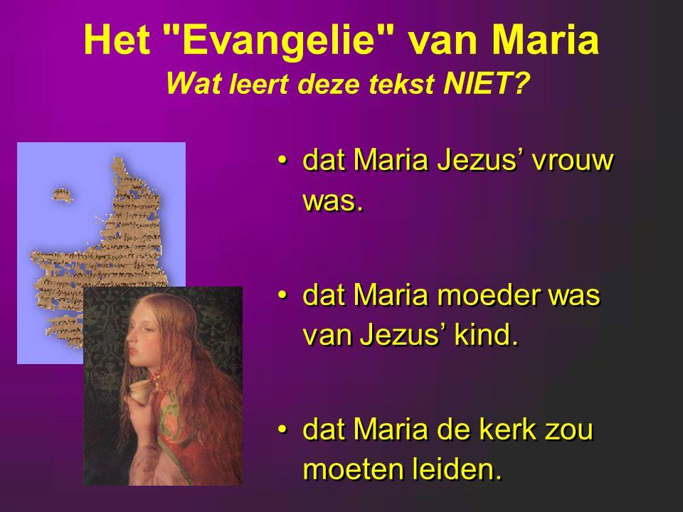 dat Maria Jezus' vrouw was.dat Maria moeder was van Jezus' kind.