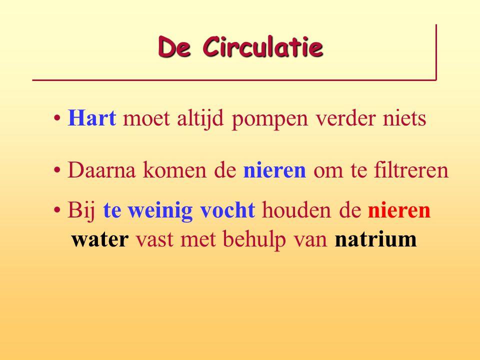 De Circulatie Hart moet altijd pompen verder niets Daarna komen de nieren om te filtreren Bij te weinig vocht houden de nieren water vast met behulp v