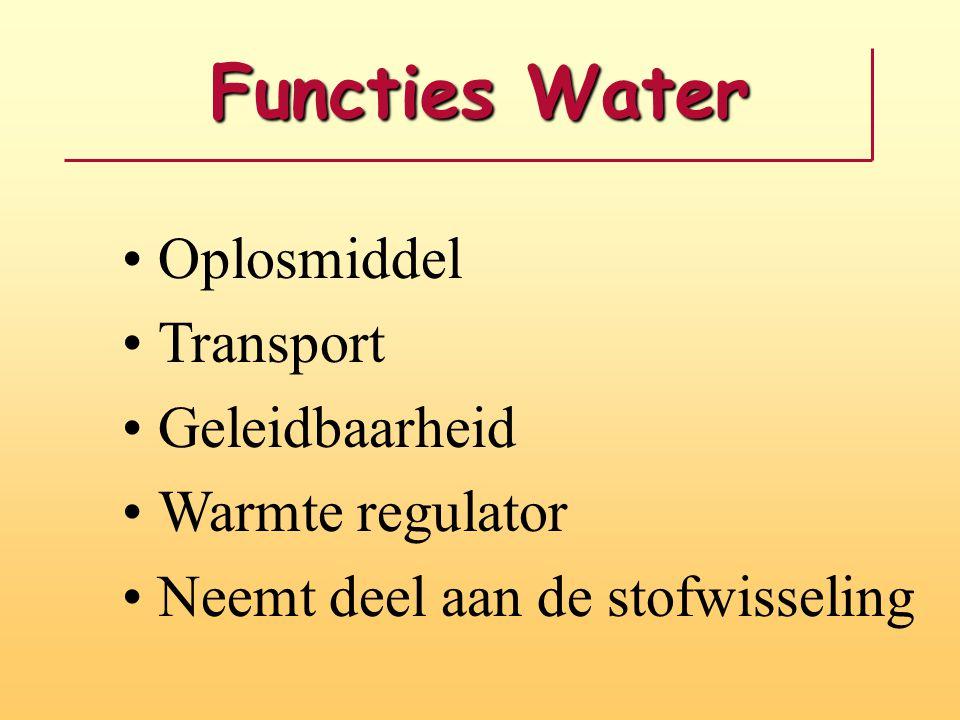 Functies Water Oplosmiddel Transport Geleidbaarheid Warmte regulator Neemt deel aan de stofwisseling