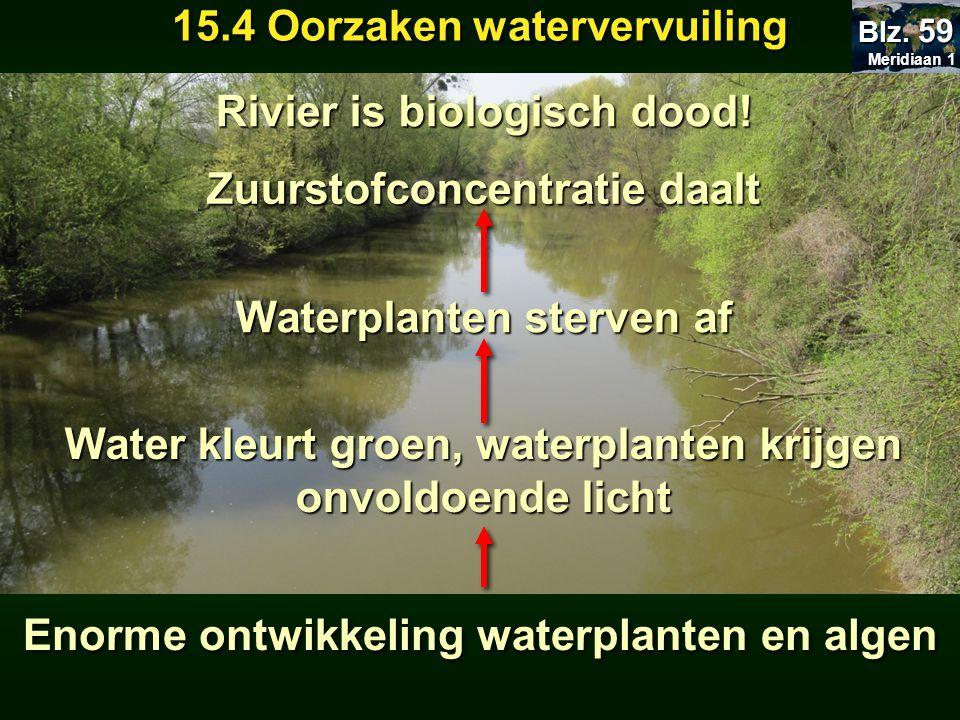 Meridiaan 1 Meridiaan 1 Blz. 59 15.4 Oorzaken watervervuiling Enorme ontwikkeling waterplanten en algen Water kleurt groen, waterplanten krijgen onvol