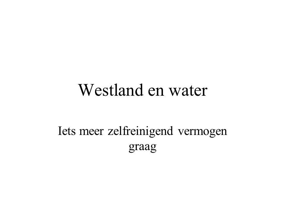 Westland en water Iets meer zelfreinigend vermogen graag