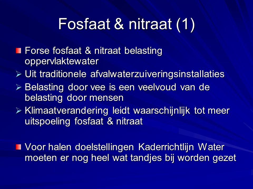 Fosfaat & nitraat (2) Eindige voorraad fosfaat erts  Piek fosfaat productie in zicht Eindige voorraad aardgas (grondstof stikstof kunstmest)  Wereldwijd verbruik aardgas per jaar = ~3 miljoen jaar vorming  In Nederland: piek aardgas productie in 2004