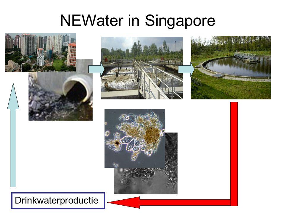 NEWater in Singapore Drinkwaterproductie