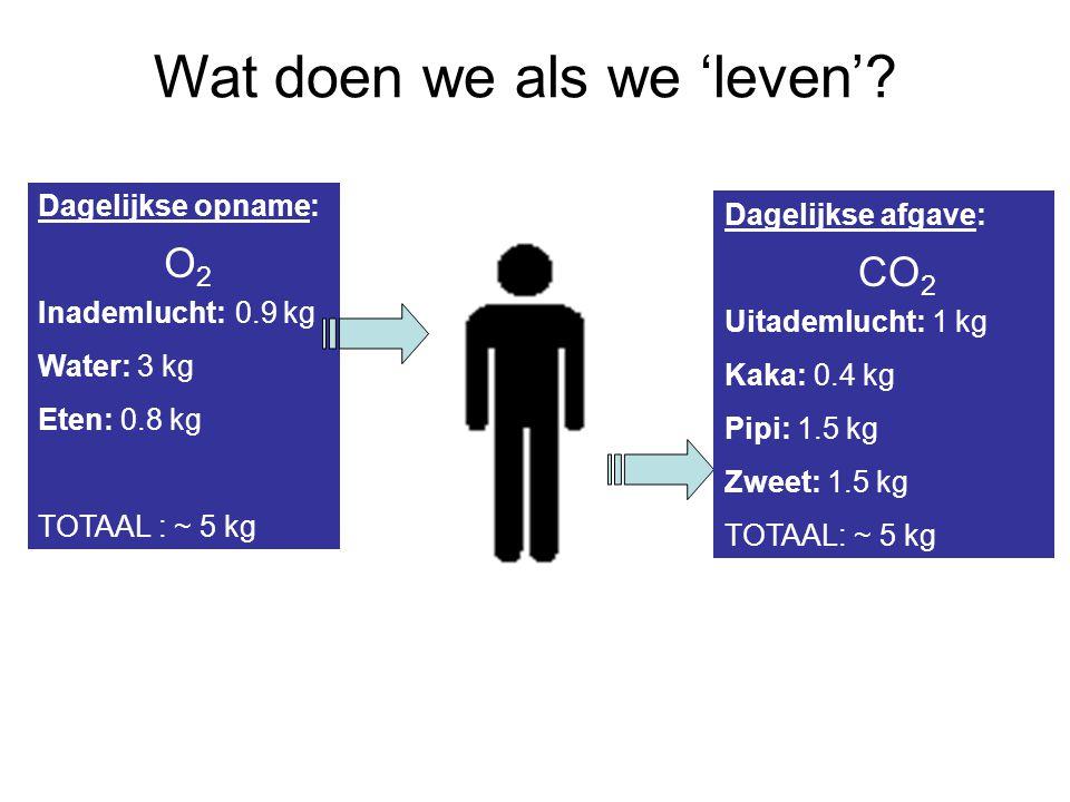 Dagelijkse opname: Inademlucht: 0.9 kg Water: 3 kg Eten: 0.8 kg TOTAAL : ~ 5 kg Dagelijkse afgave: Uitademlucht: 1 kg Kaka: 0.4 kg Pipi: 1.5 kg Zweet: 1.5 kg TOTAAL: ~ 5 kg O2O2 CO 2 Wat doen we als we 'leven'?