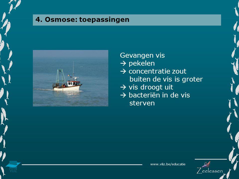 www.vliz.be/educatie 4. Osmose: toepassingen Gevangen vis  pekelen  concentratie zout buiten de vis is groter  vis droogt uit  bacteriën in de vis