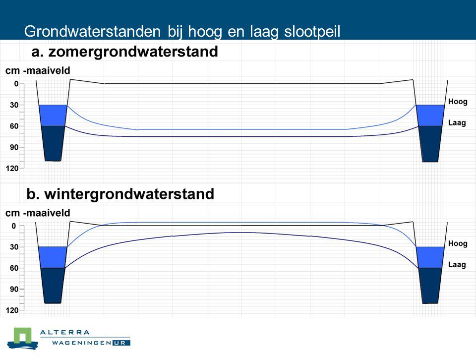 Grondwaterstanden bij hoog en laag slootpeil
