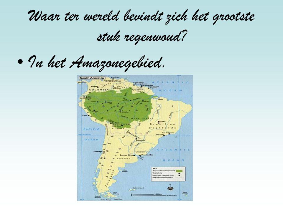 Hoeveel millimeter valt er gemiddeld per jaar in Nederland? 850 milliliter in Nederland