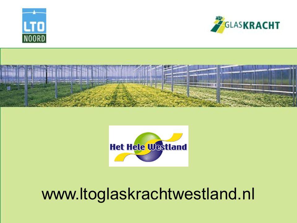 www.ltoglaskrachtwestland.nl