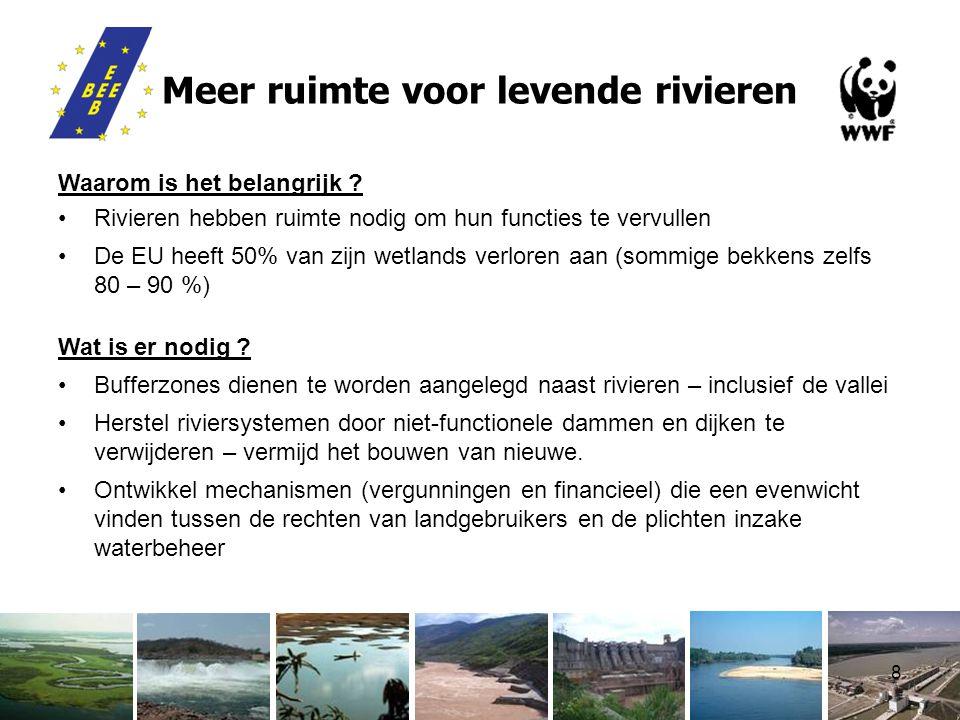8 Meer ruimte voor levende rivieren Waarom is het belangrijk .
