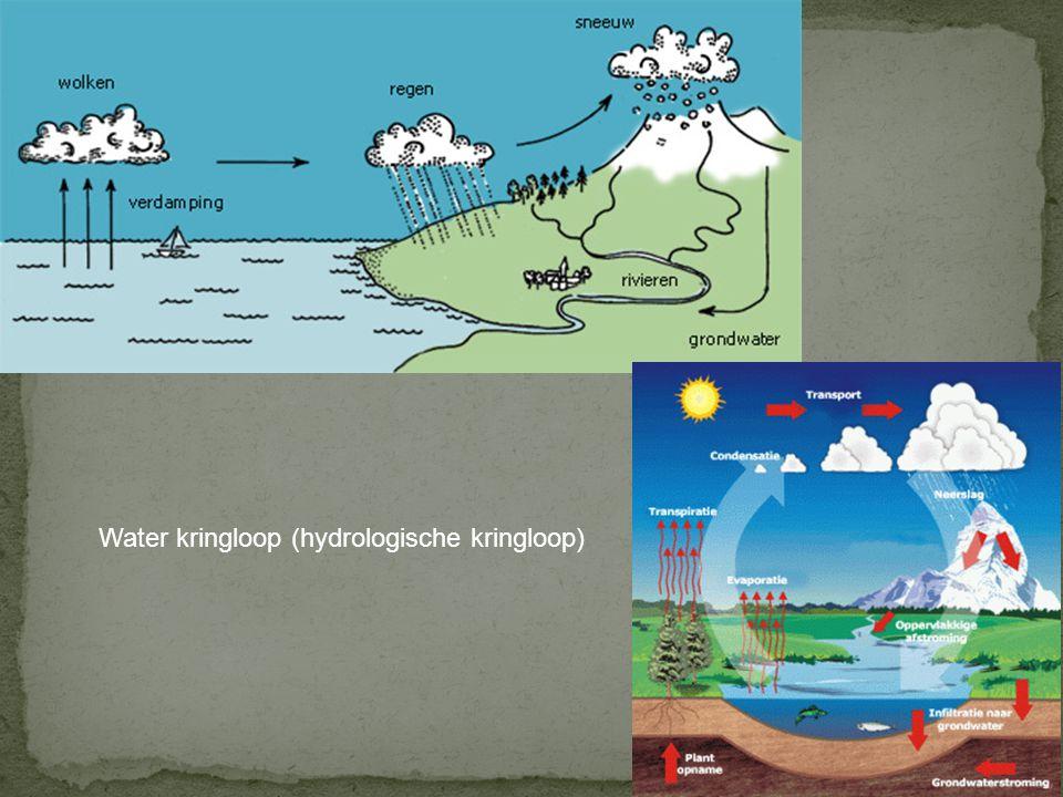 Water kringloop (hydrologische kringloop)